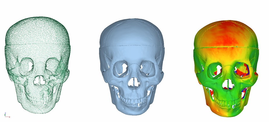 Picture shows raw point cloud data points, STL mesh and Colour Map of a laser scanned plastic skull, following the Halloween theme.